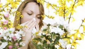 Alleviate Your Allergies With These Simple Tips by Okulista.Wroclaw.pl